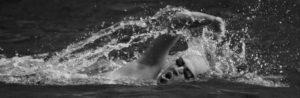Robert Pasold, Open Water Schwimmer im USC Graz – Masters